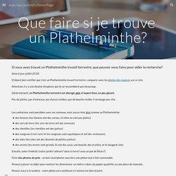 Jean-Lou Justine's Home Page - Que faire si je trouve un Plathelminthe?