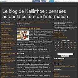 Un référent culture au lycée (et le doc?) - Le blog de Kallirrhoe : pensées autour la culture de l'information