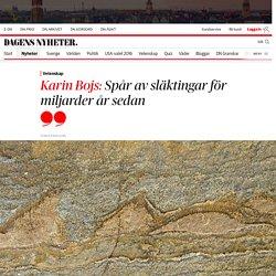 Karin Bojs: Spår av släktingar för miljarder år sedan