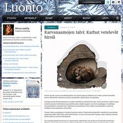 Karvanaamojen talvi: Karhut vetelevät hirsiä