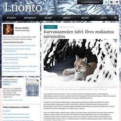 Karvanaamojen talvi: Ilves mukautuu talvioloihin