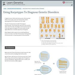 Using Karyotypes To Diagnose Genetic Disorders
