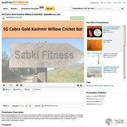 SG Cobra Gold Kashmir Willow Cricket Bat - Sabkifitness.Com