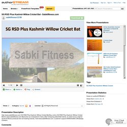 SG RSD Plus Kashmir Willow Cricket Bat - Sabkifitness.Com