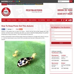 How To Keep Pests Out This Autumn