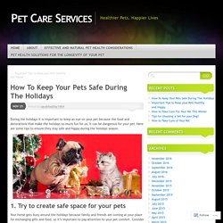 How To Keep Your Pets Safe During The Holidays