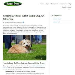 Keeping Artificial Turf in Santa Cruz, CA Odor-Free