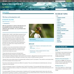 The buzz on keeping bees safe – Features – ABC Environment
