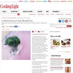 Keeping Fresh Herbs Fresh - 11 Herbs Every Cook Should Use