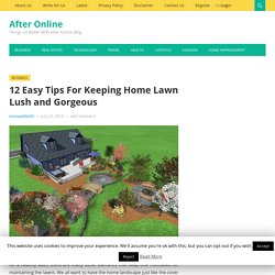 12 Easy Tips For Keeping Home Lawn Lush and Gorgeous - After Online