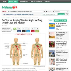 Top Tips for Keeping This One Neglected Body System Clean and Healthy
