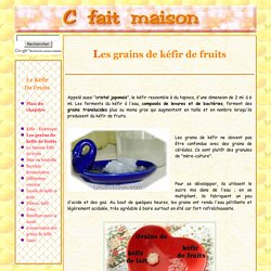 Kéfir de fruits à l'eau - Les grains de kéfir.