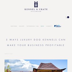 5 Ways Luxury Dog Kennels Can Make Your Business Profitable — Kennel & Crate