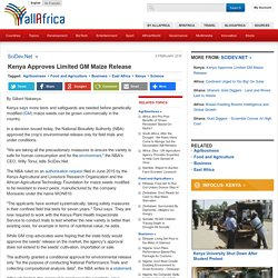Kenya Approves Limited GM Maize Release