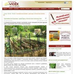Szalmabála-kertészkedés: újabb lépés a fenntartható önellátás felé