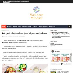 ketogenic diet foods recipes: all you need to know - Wellness-Mindset