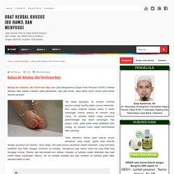 Obat Herbal Khusus IBU HAMIL dan MENYUSUI