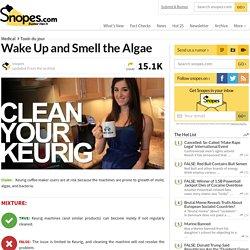 Keurigs Harbor Mold, Bacteria, and Algae?