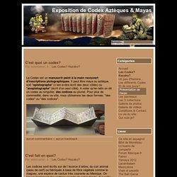 Les Codex? Kezako? - Exposition de Codex Aztèques & Mayas