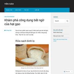 Khám phá công dụng bất ngờ của hạt gạo – Yến sào