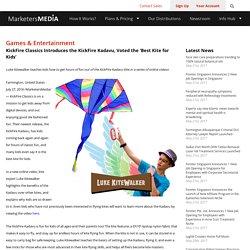 Premium Blue Delta Kite
