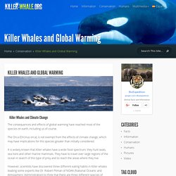 Killer Whales and Global Warming - Killer Whale Facts and Information