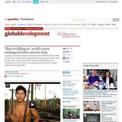 'They're killing us': world's most endangered tribe cries for help | World news | The Observer