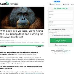 texte de la pétition: With Each Bite We Take, We're Killing the Last Orangutans and Burning the Bornean Rainforest