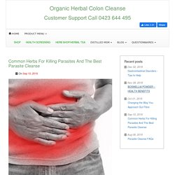 Common Herbs For Killing Parasites and the Best Parasite Cleanse