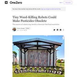 Tiny Weed-Killing Robots Could Make Pesticides Obsolete