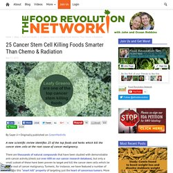 25 Cancer Stem Cell Killing Foods Smarter Than Chemo & Radiation - Food Revolution Network
