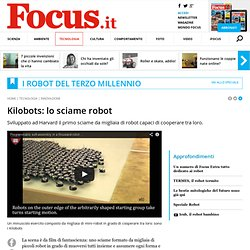 Kilobots: lo sciame robot - Focus.it