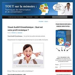 Visuel Auditif Kinesthésique : Quel est votre profil mnésique ?Le Blog référence sur votre Mémoire