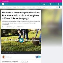 Harvinaista suomalaispuuta himoitaan kitaramateriaaliksi ulkomaita myöten – Video: Näin soitin syntyy