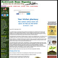 Your kitchen pharmacy: How common culinary herbs and spices can help you feel better by Rebekah L. Cowell