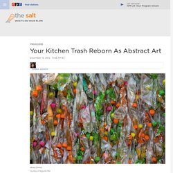 Your Kitchen Trash Reborn As Abstract Art
