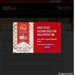 Kitchen Wallpaper Catalog, Washable Wallpaper, Borders Washable Wallpaper