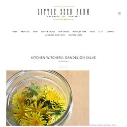 Kitchen Witchery: Dandelion Salve  - To Be A Farmer - Little Seed Farm