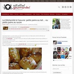 Petits pains au lait… ou petits pains au sucre