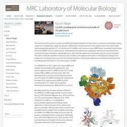 Kiyoshi Nagai - MRC Laboratory of Molecular Biology