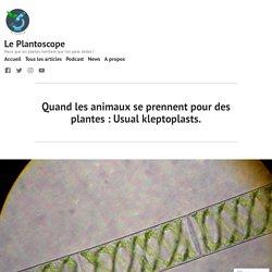 Quand les animaux se prennent pour des plantes : Usual kleptoplasts. – Le Plantoscope