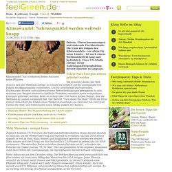Klimawandel: Werden die Nahrungsmittel knapp?