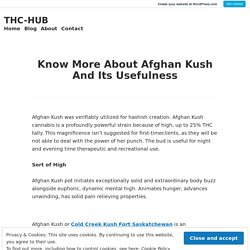 Know More About Afghan Kush And Its Usefulness – THC-HUB