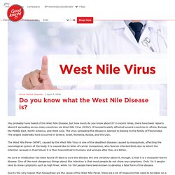 Do you know what the West Nile Disease is?