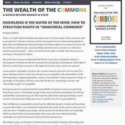 "Knowledge is the Water of the Mind: How to Structure Rights in ""Immaterial Commons"""