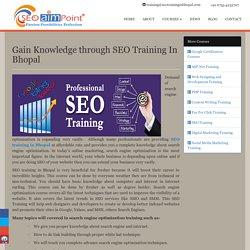Gain Knowledge through SEO Training In Bhopal