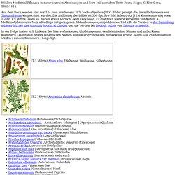 Koehlers Plantes Médicinales