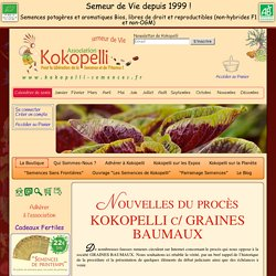 Nouvelles du procès KOKOPELLI c/ GRAINES BAUMAUX, Mai 2013
