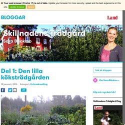 Del 1: Den lilla köksträdgården
