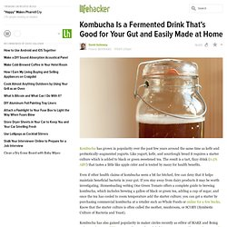 Kombucha Is a Fermented Drink That's Good for Your Gut and Easily Made at Home